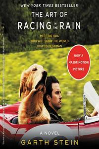 The_Art_of_Racing_in_the_Rain